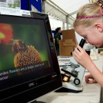 Discovery Zone at the Great Yorkshire Show