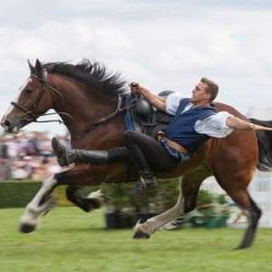 Atkinson Action Horses to perform in the Main Ring at the Great Yorkshire Show 2020